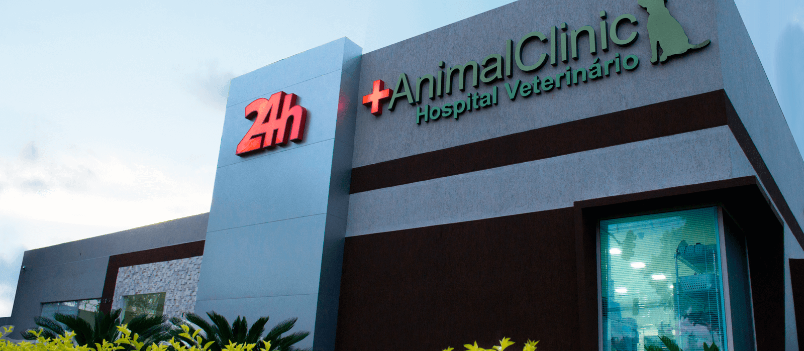 Animal Care 24h: o seu Hospital Veterinário
