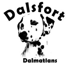 Dalsfort Kennel | Kennel